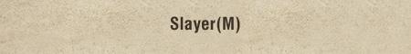 Slayer(M)