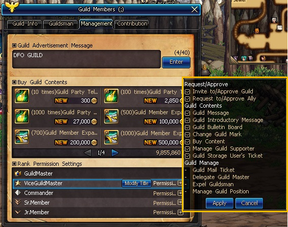 updated features dungeon fighter online